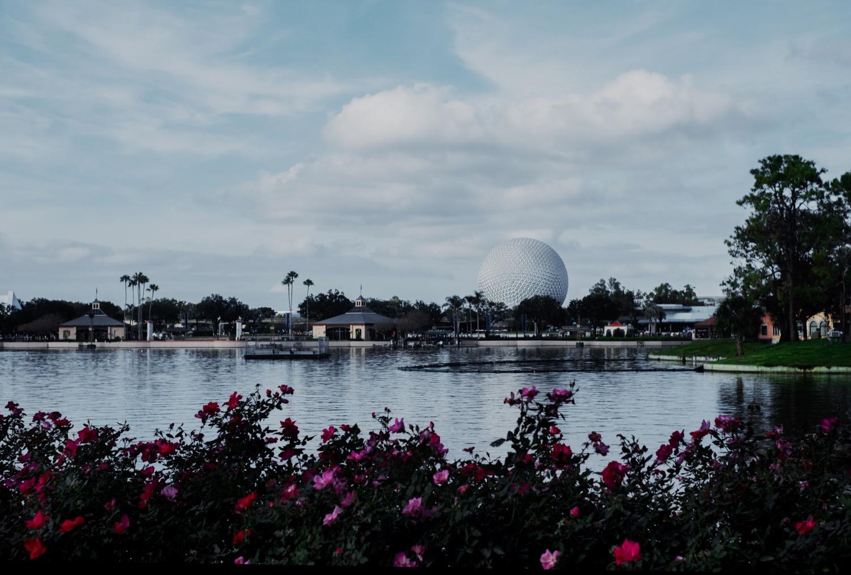04_Disney-Universal-2018_0031.jpg