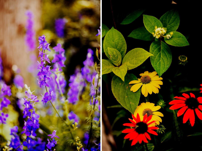 026_Treml-Meck-Blumen-Gardens-Sycamore-Wedding0037_Treml-Meck-Blumen-Gardens-Sycamore-Wedding0036.jpg