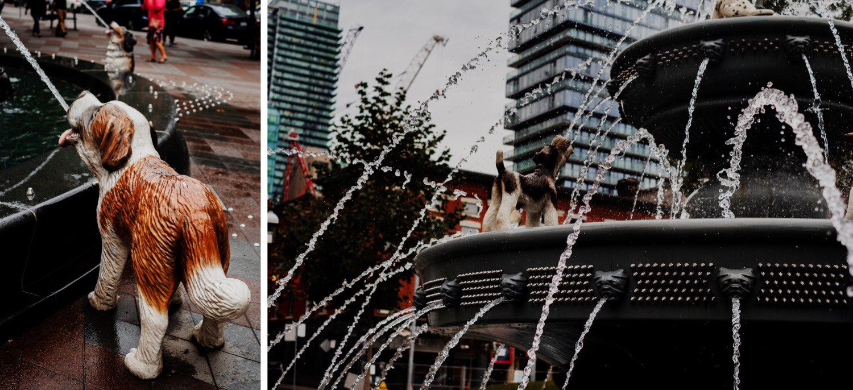 46_Toronto-2019_0178_Toronto-2019_0176.jpg
