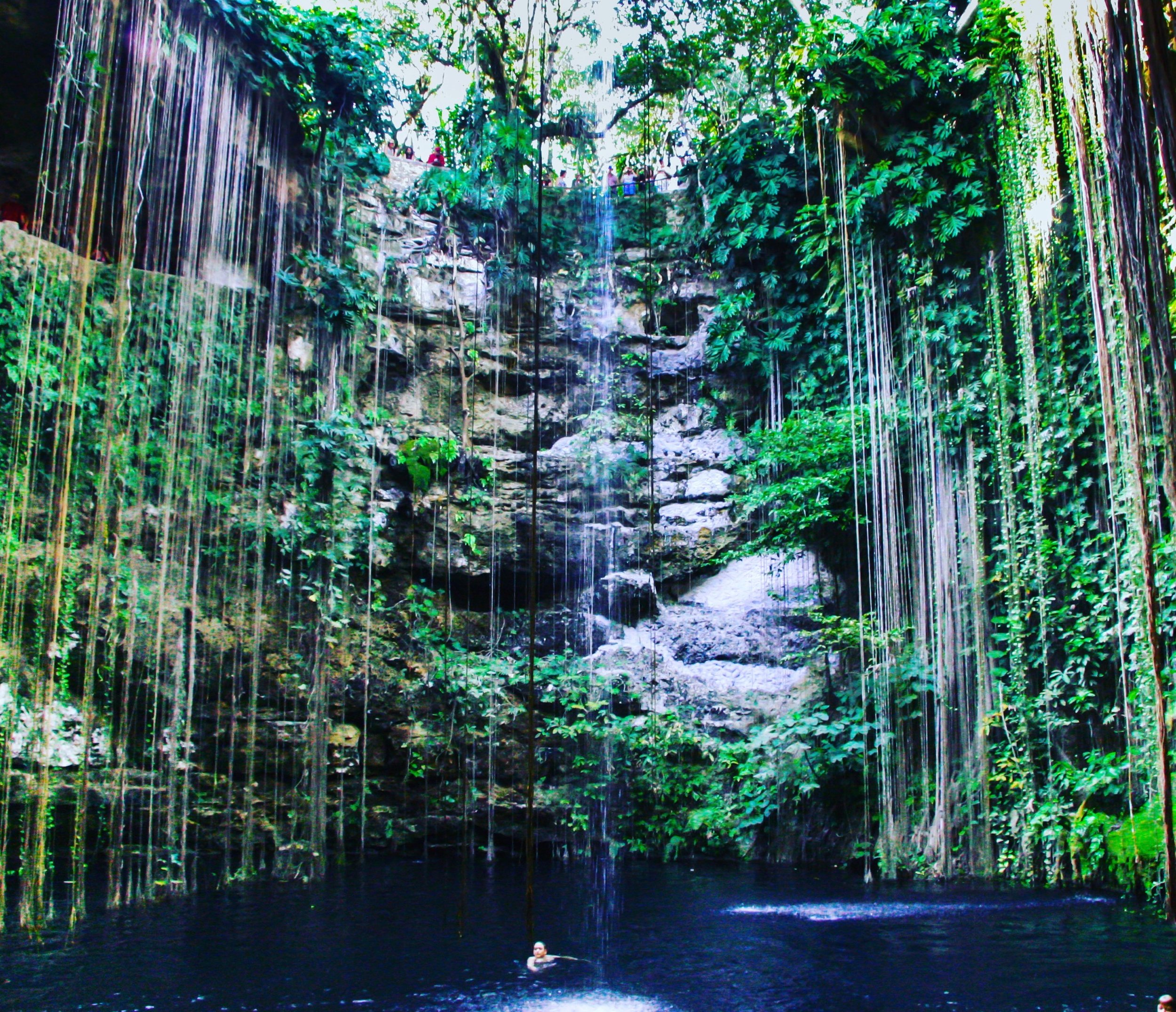 cenote-near-playa-del-carmen-riviera-maya-yucat-n-peninsula-m-xico_t20_4EvkJx.jpg