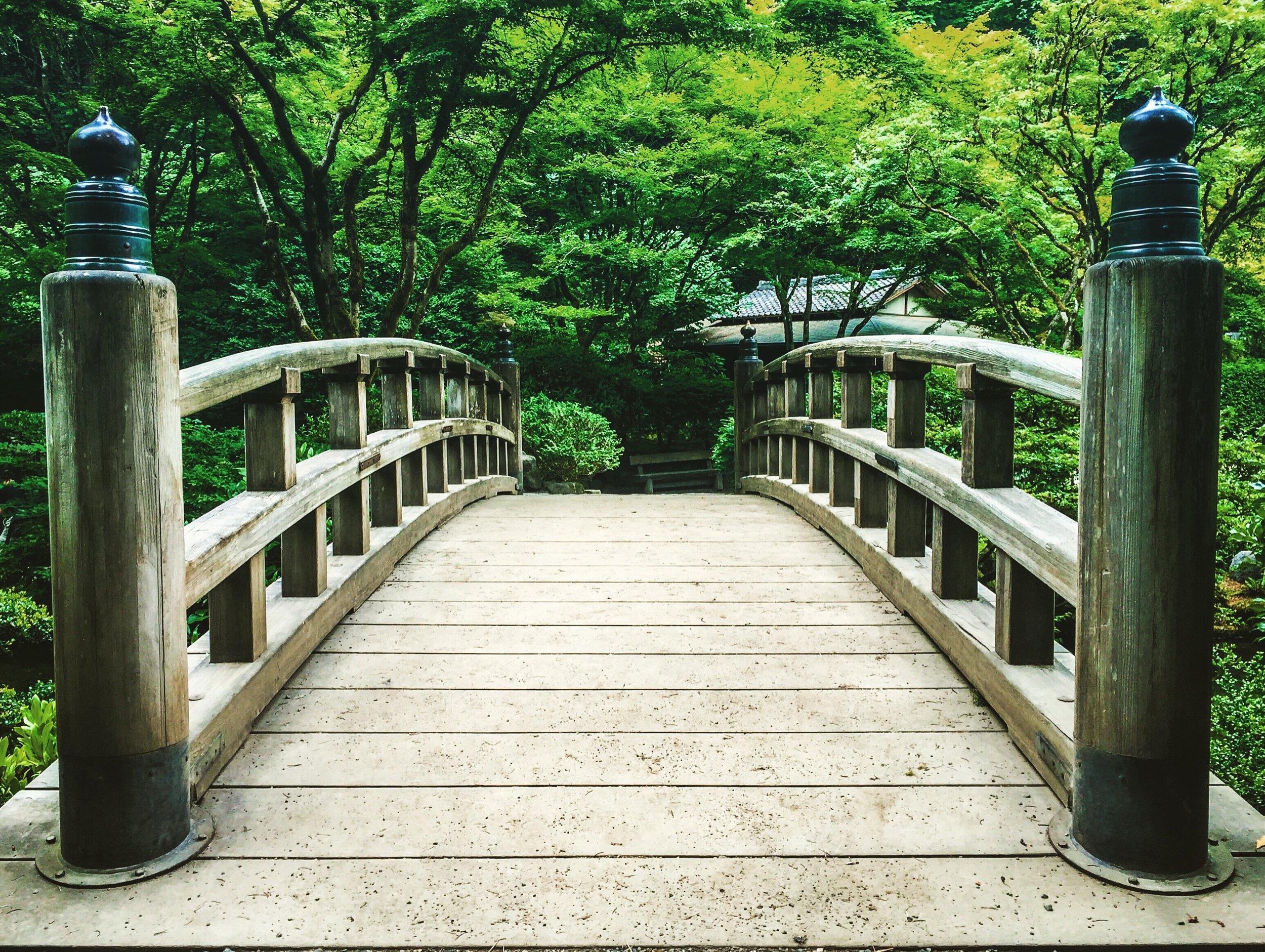 japanese-garden-in-portland_t20_GGJlnR.jpg