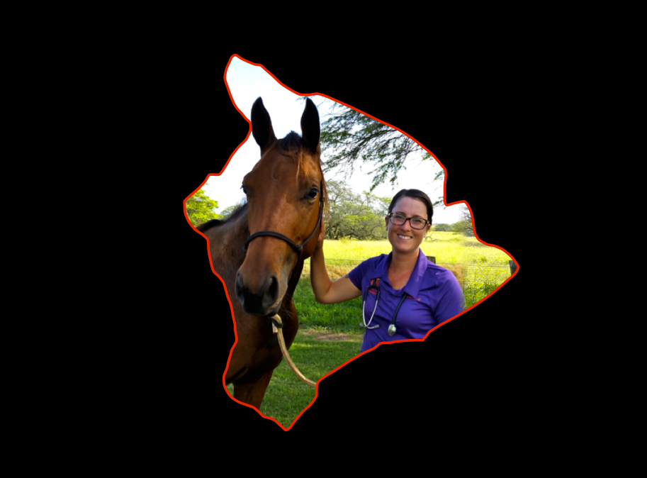 Dr. Kelleyerin Clabaugh of Aramat Equine with her 2 year old Warmblood.