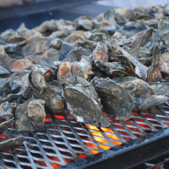 Support Historic Rosedale by attending its annual Oyster Roast March 26.