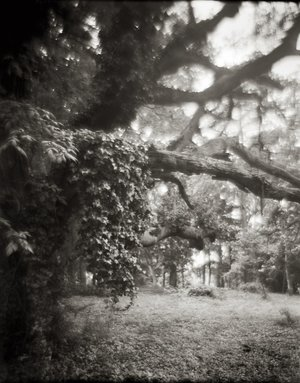 Photographs by N.C. artist Linda Foard Roberts are on view May 10-June 23 at Soco Gallery.