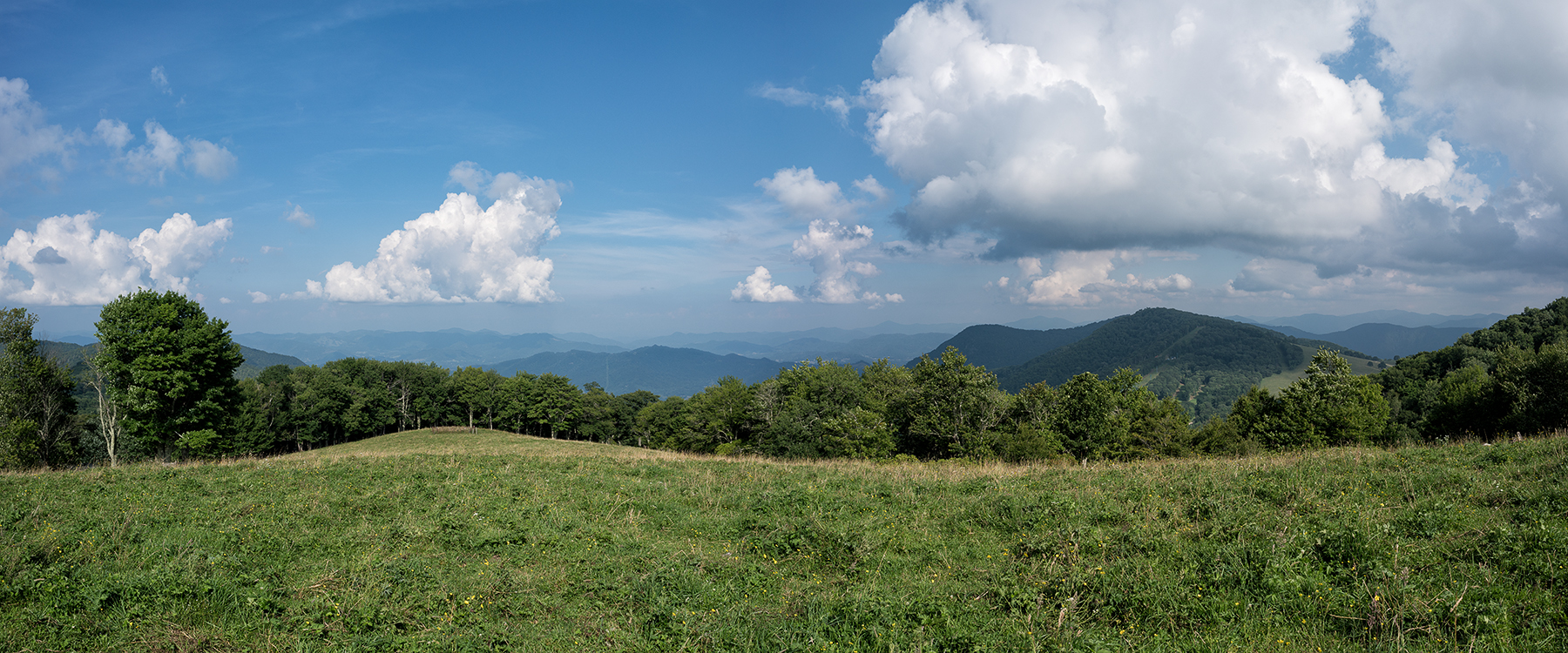 Experience the Aug. 21 eclipse with 360 degrees of open, unobstructed views in a meadow a mile high on Fie Top Mountain during a private celebration at Cataloochee Ranch in Maggie Valley.