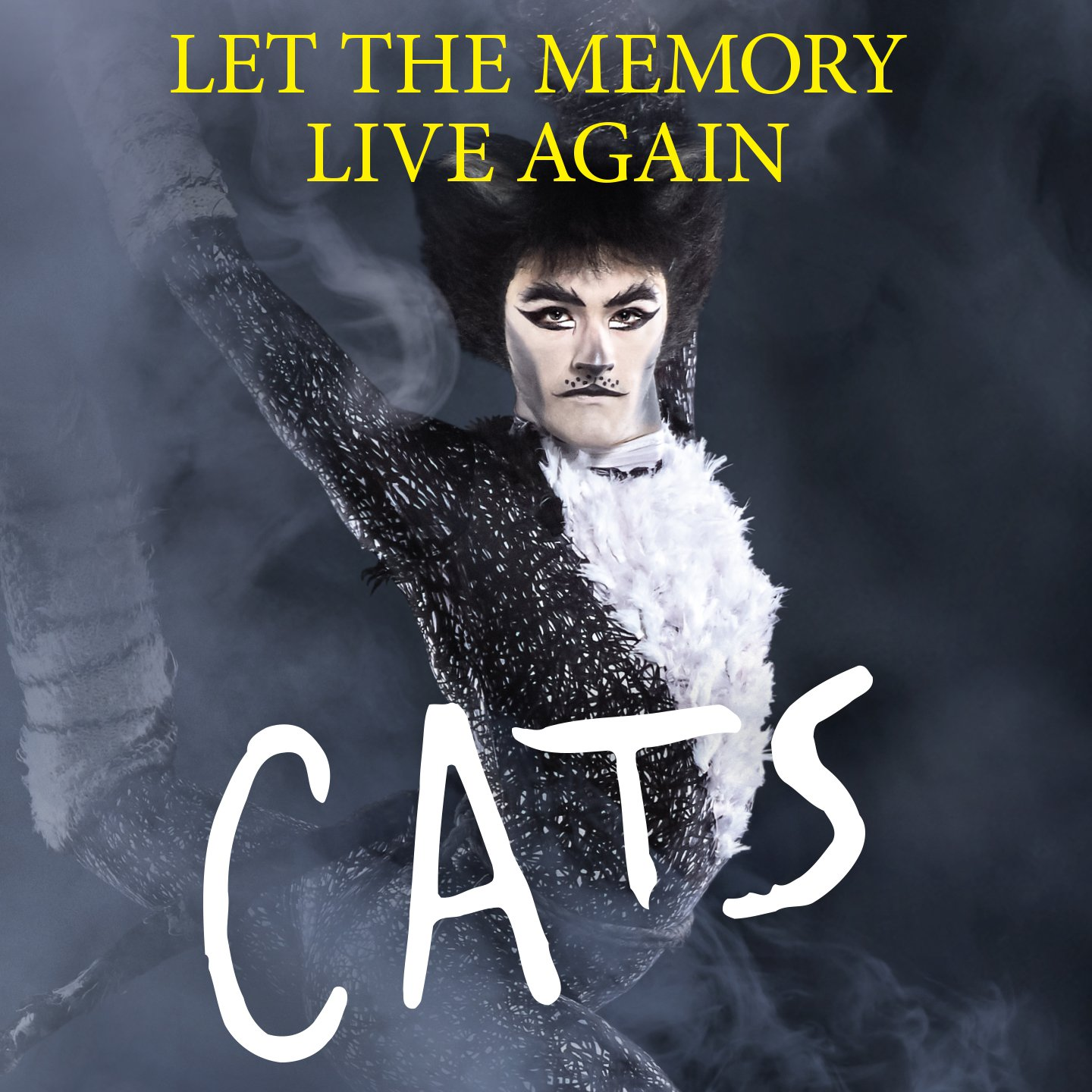 An updated production of the beloved musical  Cats  comes to Belk Theater Aug. 13-18.