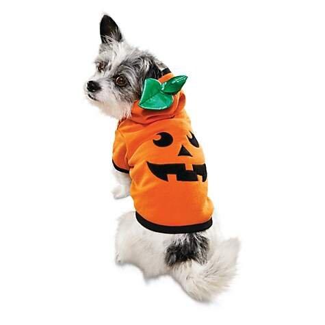 Jack O. Lantern Dog Hoodie, $9.99 (was $19.99).