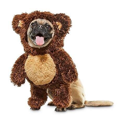 Teddy Bear Dog Costume, $10.99 (was $21.99).