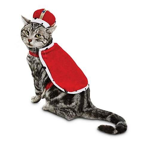 King Purrington Cat Costume, $5.99 (was $11.99).