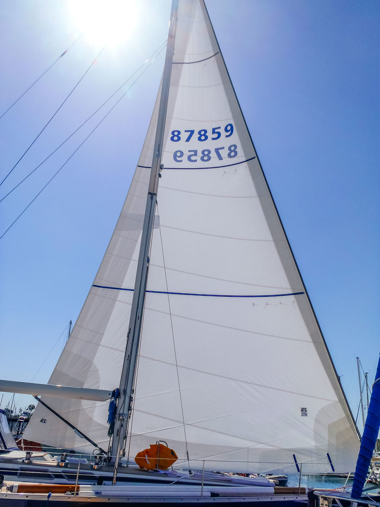 UK Sailmakers Passagemaker D  acron genoa with foam luff, reef reinforcements and UV leech and foot covers.