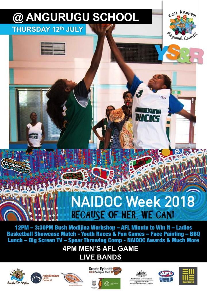 NAIDOC Day Event 2018.jpg