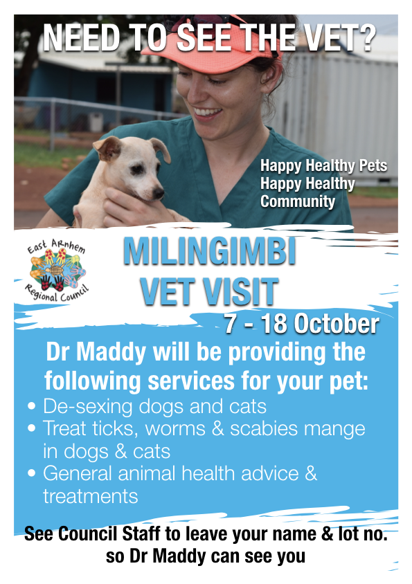 Bring your pet to see the vet! - Council Vet Dr Maddy will be in Milingimbi from the 7 - 18 October