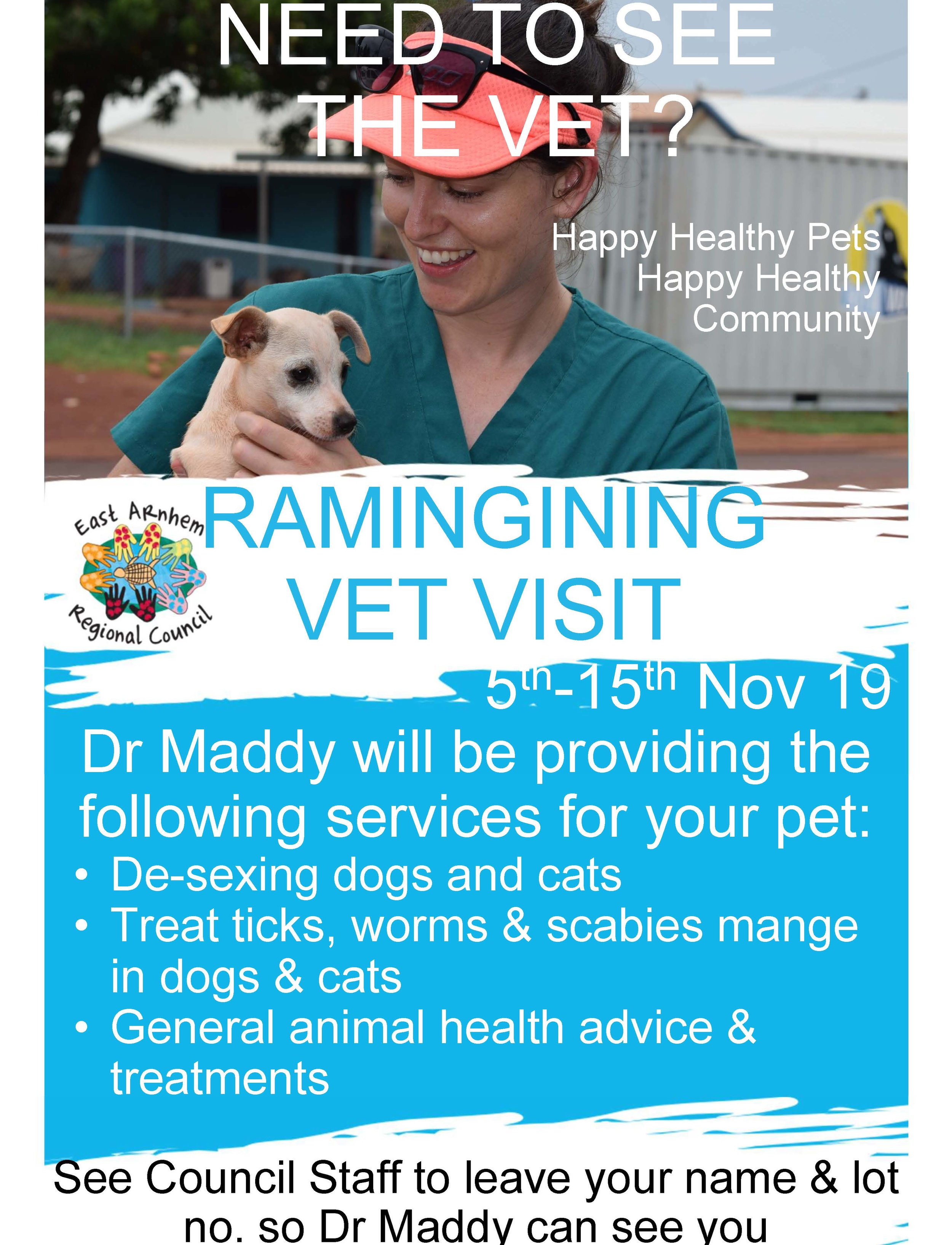 Bring your pet to see the vet! - Council Vet Dr Maddy will be in Ramingining from the 5 - 15 November