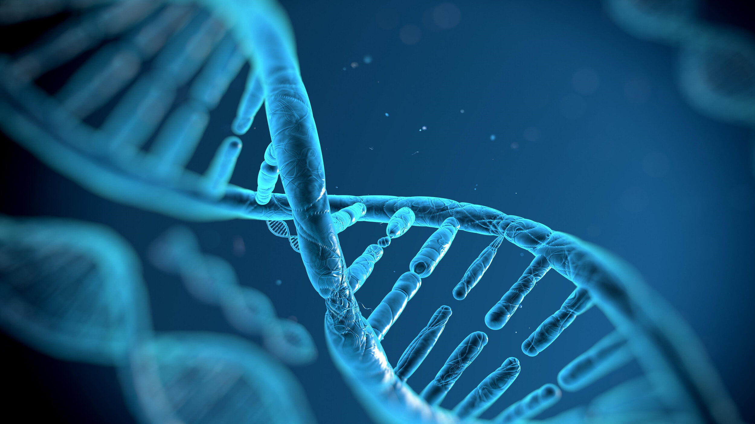 DNA.jpg