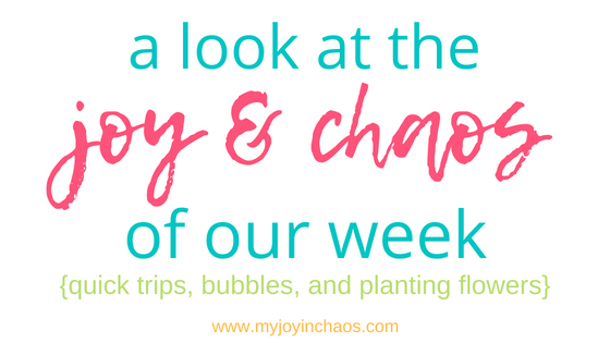 Find those things that make you grateful for your life and you will find your joy, even in the chaos | #motherhood #parenting #choosejoy #choosehappy