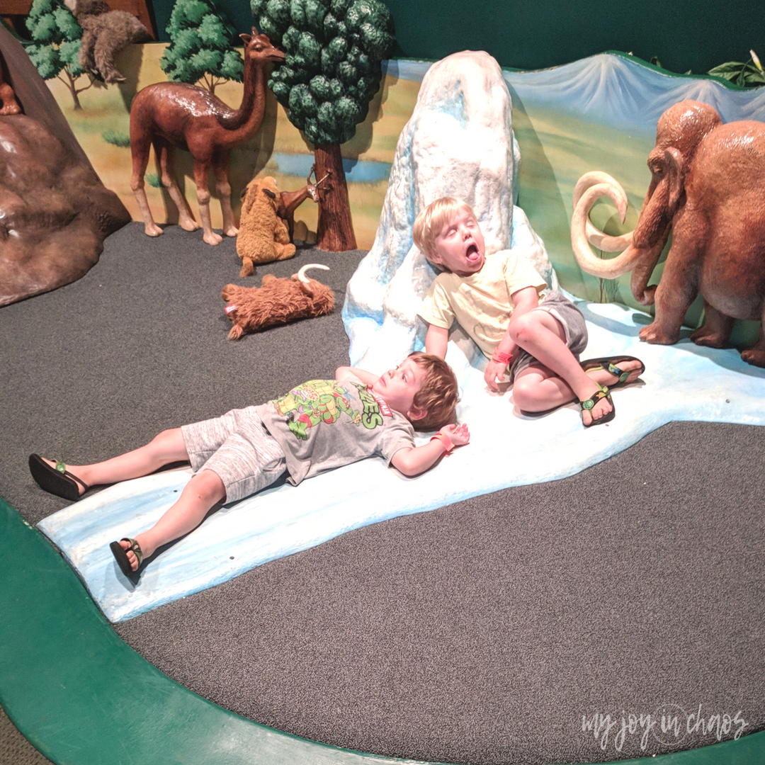 minnesota science museum ice age