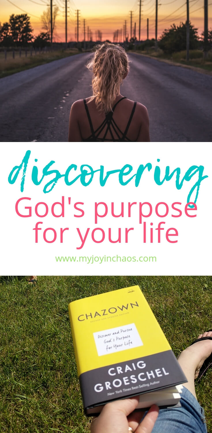 God created you with a unique purpose in mind - something He wants you to do. Are you heading in the right direction? How can you know? #bookreview #Christianliving #Godspurpose #Godspath #whatdoesGodwantforme