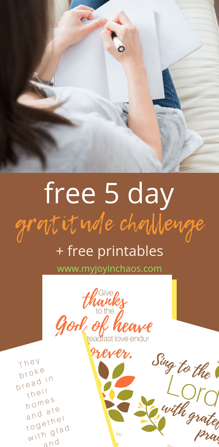 Join me in the small moments gratitude challenge. Starting now, you can sign up for a 5-day email challenge. Each morning you will receive an email from me with a few thoughts and daily verse - plus some fun surprises! #thankful #gratitudechallenge #choosegratitude #november #thanksgiving