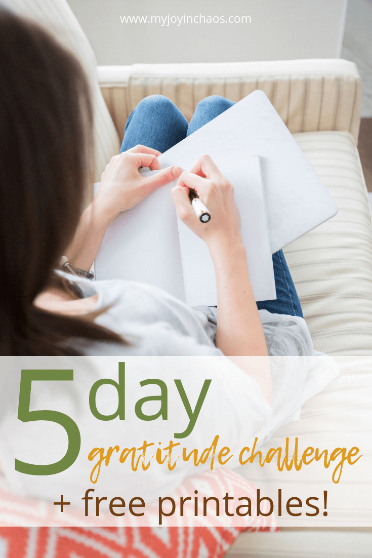 Join me in the small moments gratitude challenge. Starting now, you can sign up for a 5-day email challenge. Each morning you will receive an email from me with a few thoughts and daily verse - plus some fun surprises!