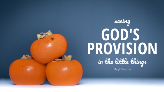 Seeing God's Provision in the little things