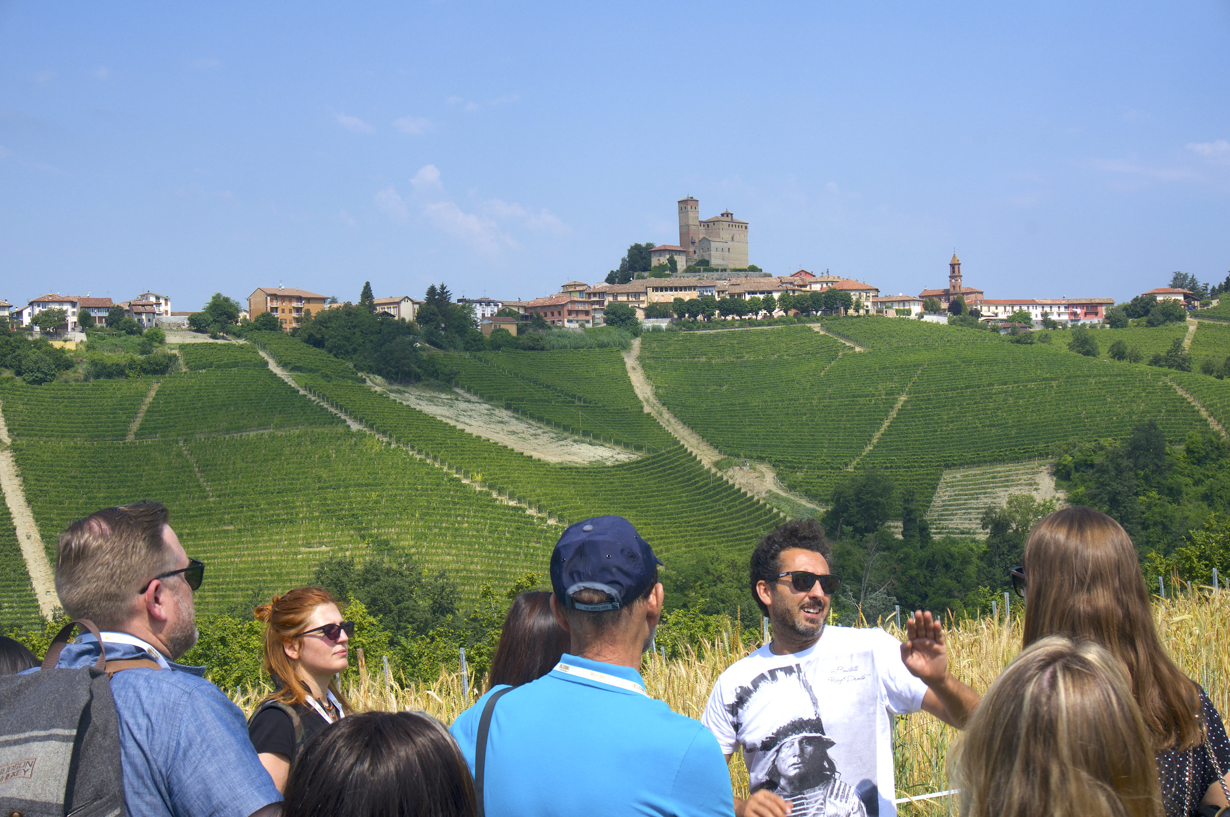 Foreground: Enrico Rivetto amongst his wheat and vines. Background: Serralunga d'Alba.