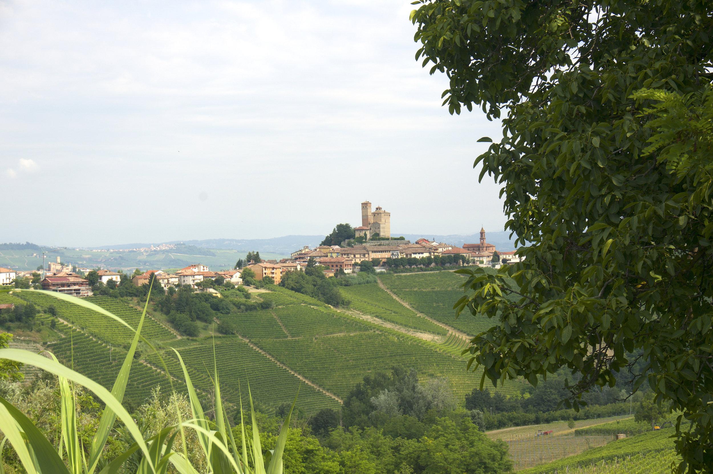 Serralunga d'Alba, Barolo, Italy.