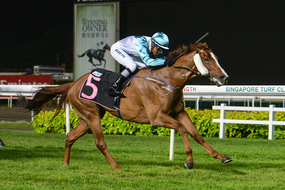 Royal Easter: winner, Maple Leaf Stakes Class 4 - 1200m