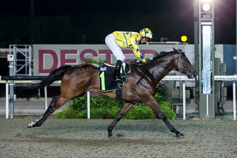 Winning Express: winner, Initiation - 1200m