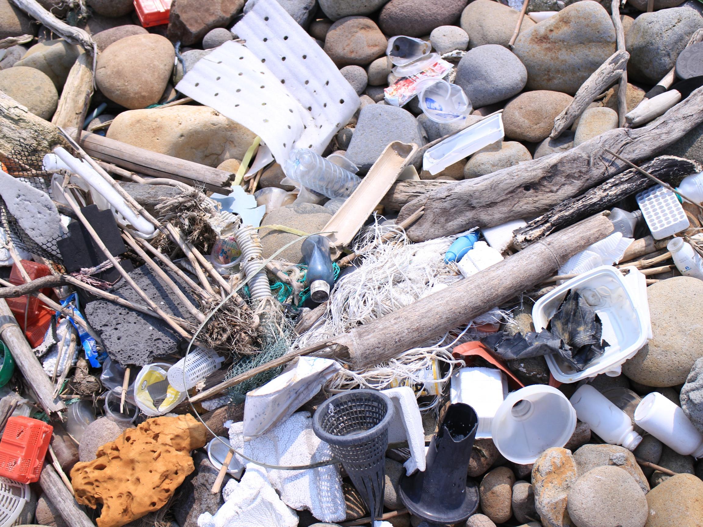 沙珠灣因為海岸地形的關係,容易讓海漂物隨海流帶入海灣內堆積在沙灘上而不易再漂走。