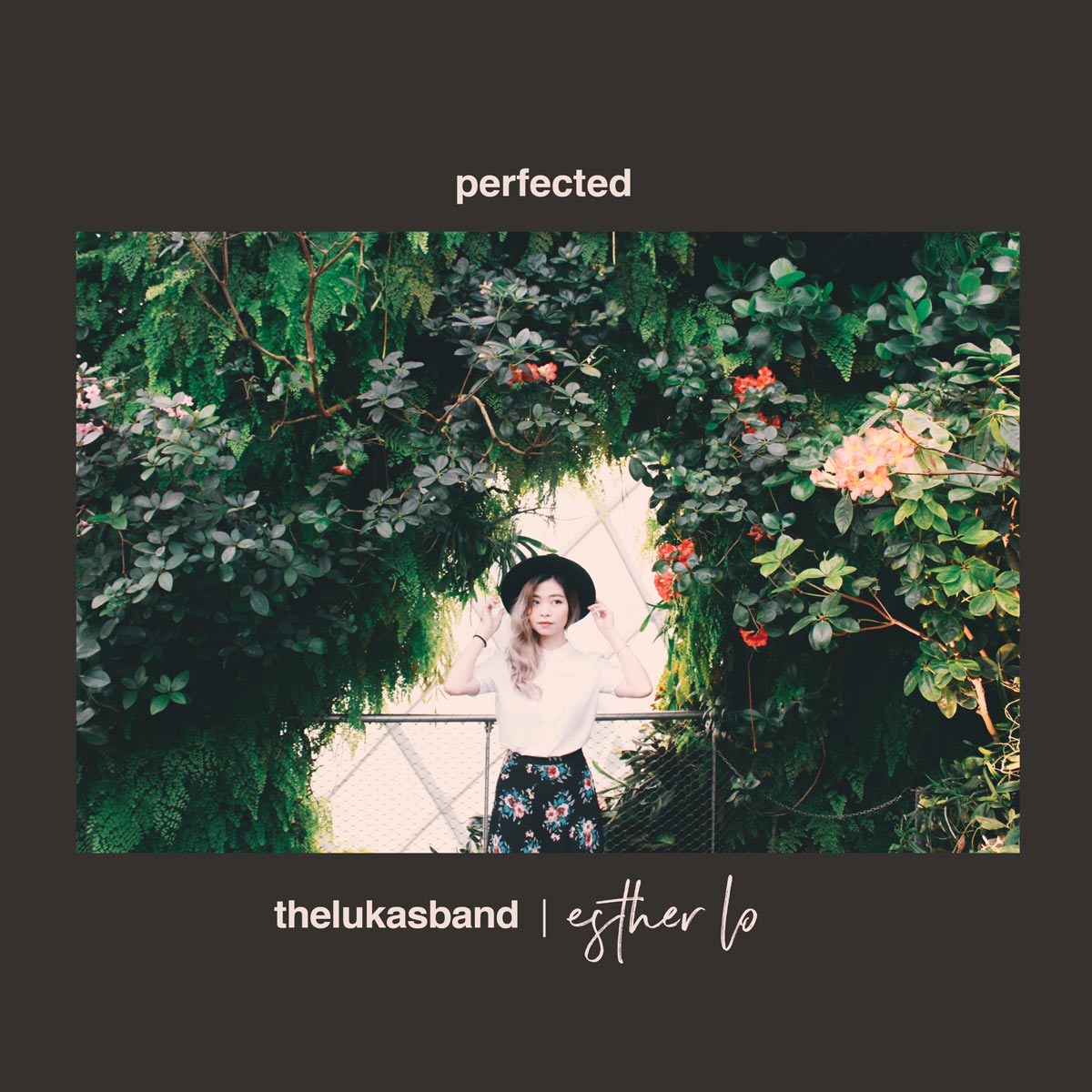 esther-lo-perfected-front-cover.jpg