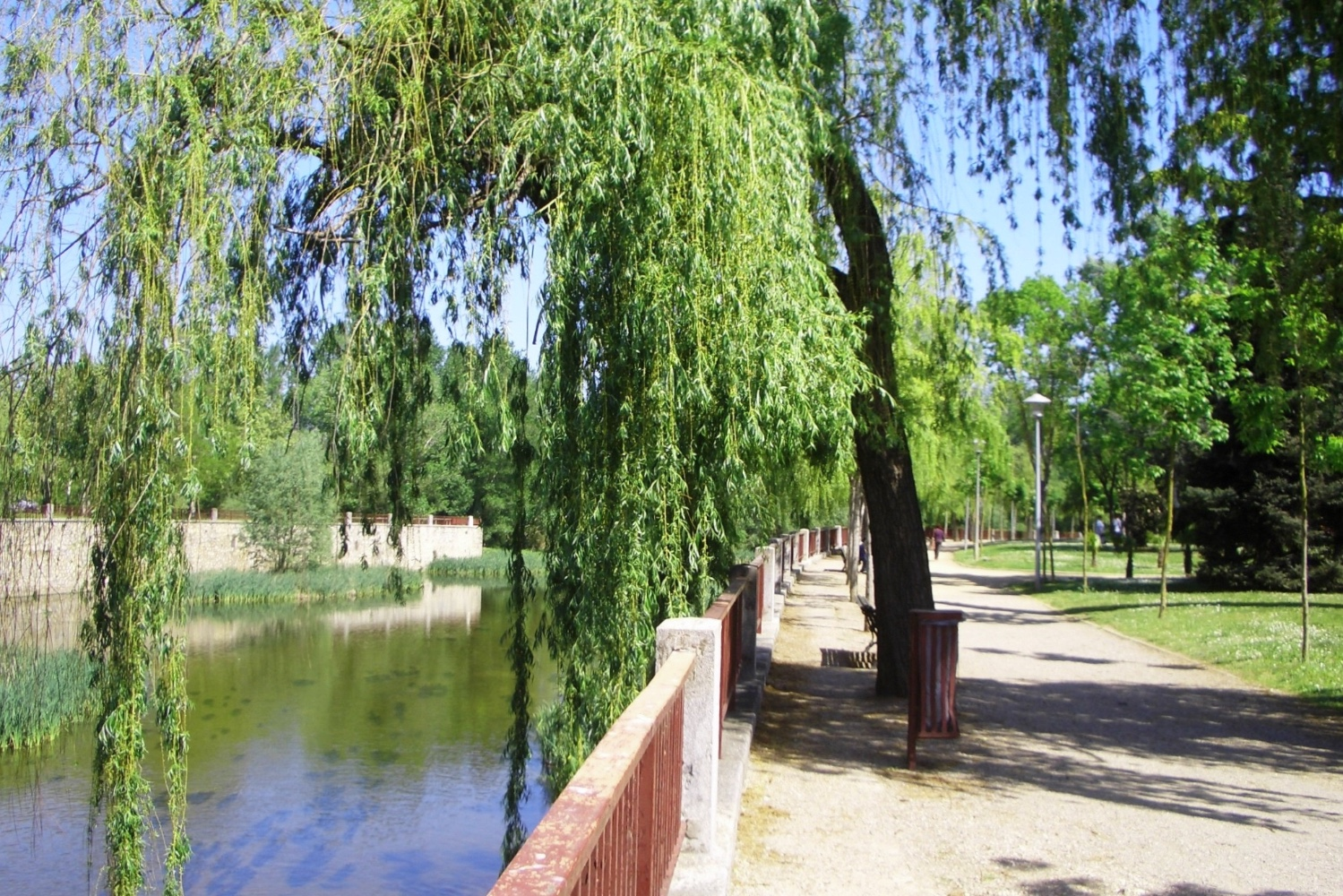 5.11 River bank near apts.jpg