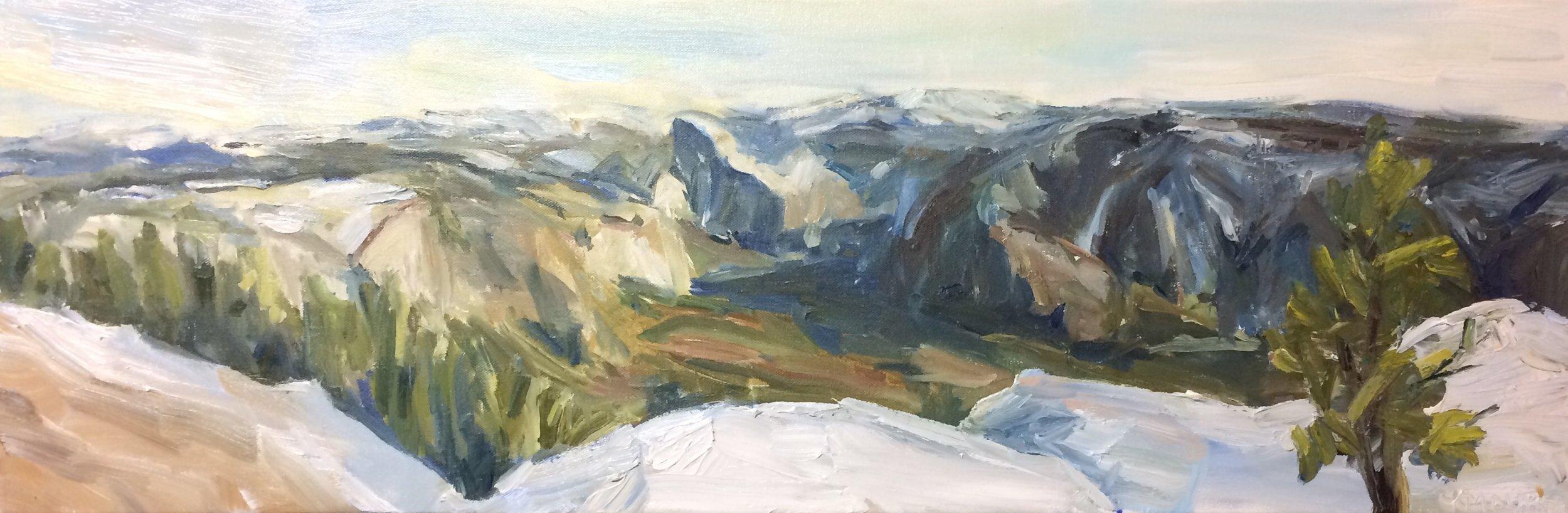 Yosemite, Oil, 12x24in