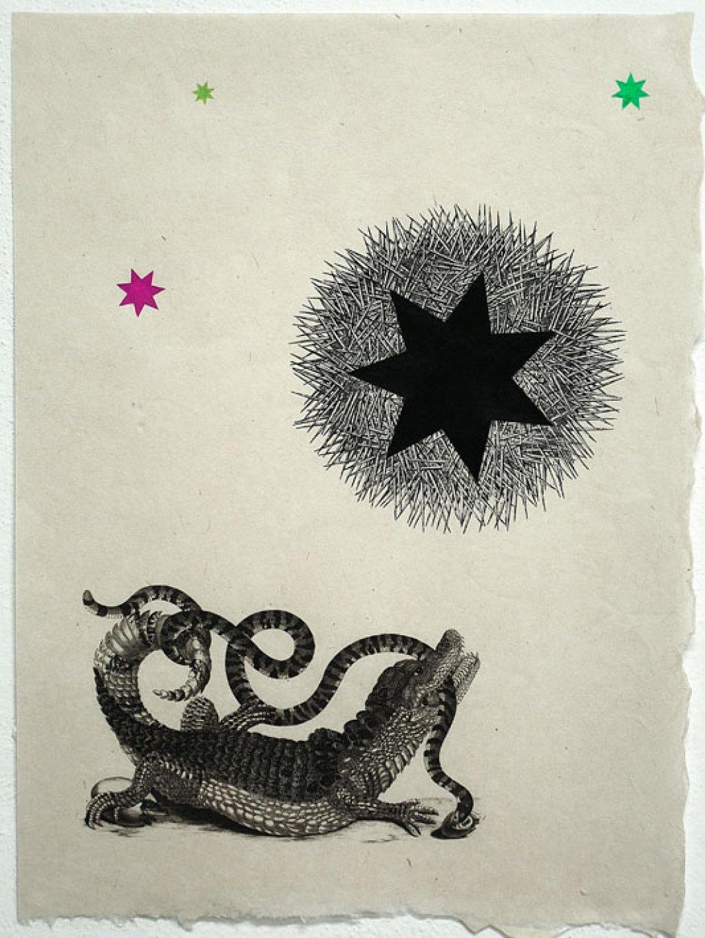 Croco Star