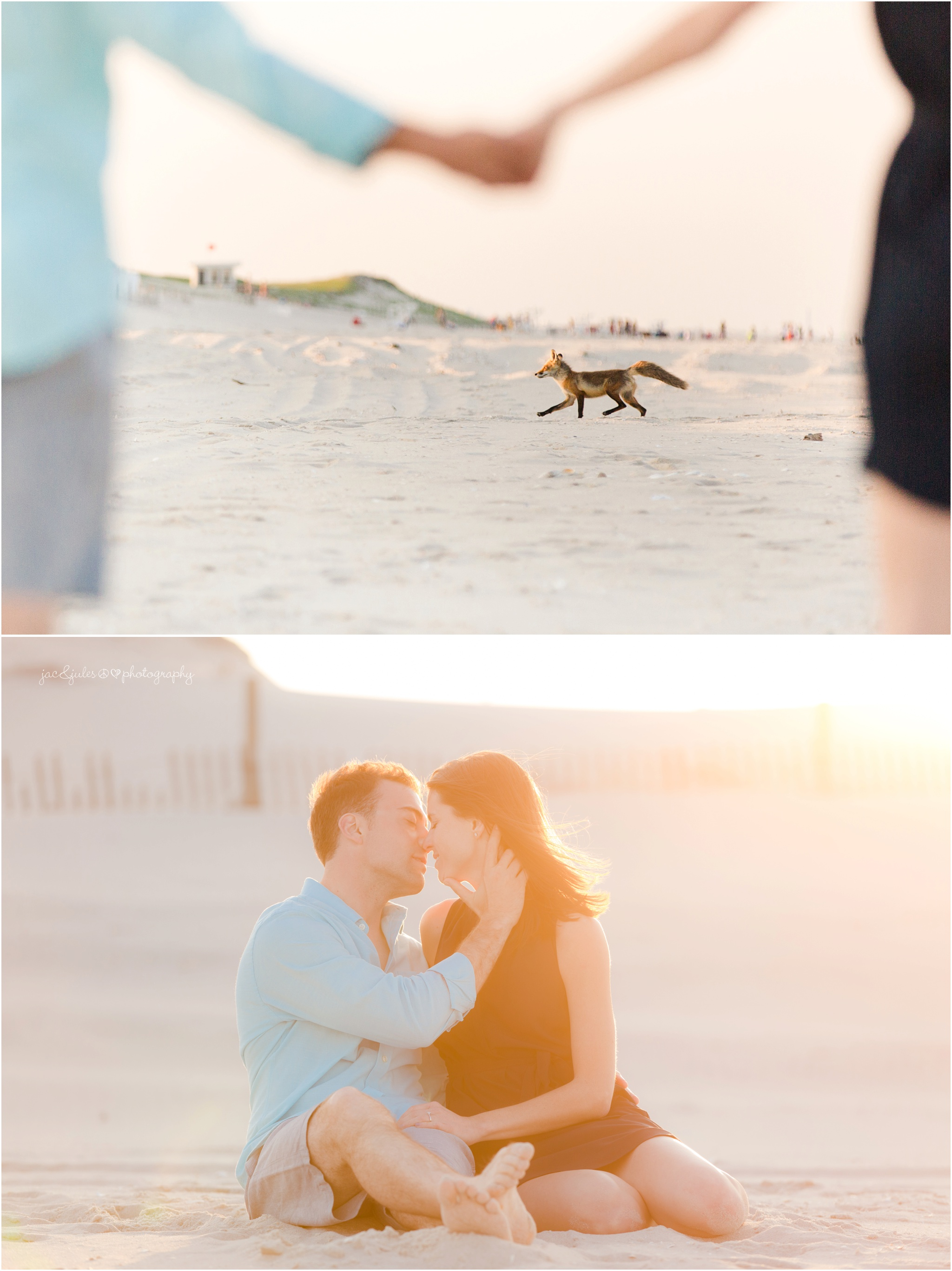 engagement photos at Island Beach State Park in Seaside Park, NJ with fox