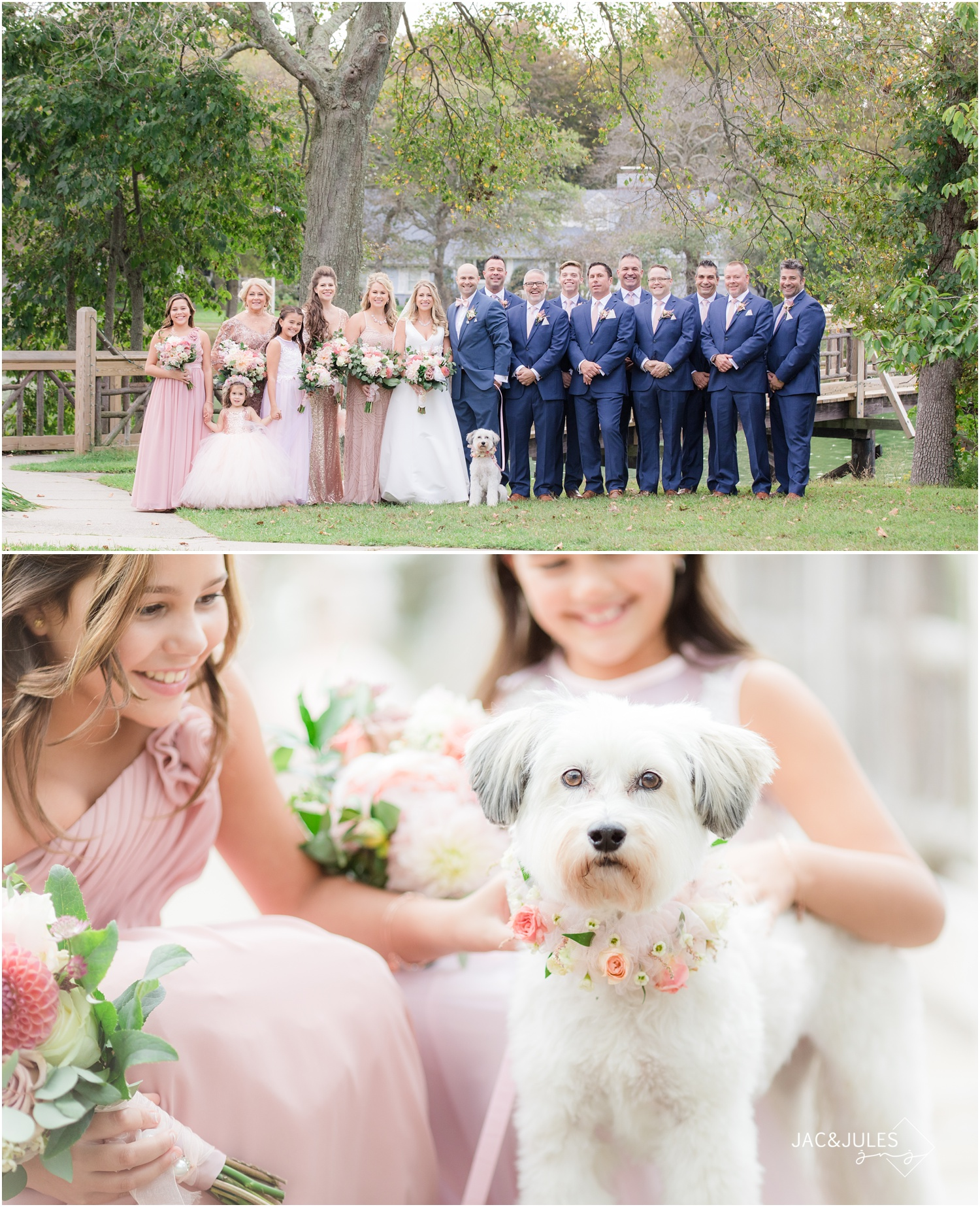 Bridal Party photos with puppy photos by the bridge in Devine Park in Spring Lake, NJ.