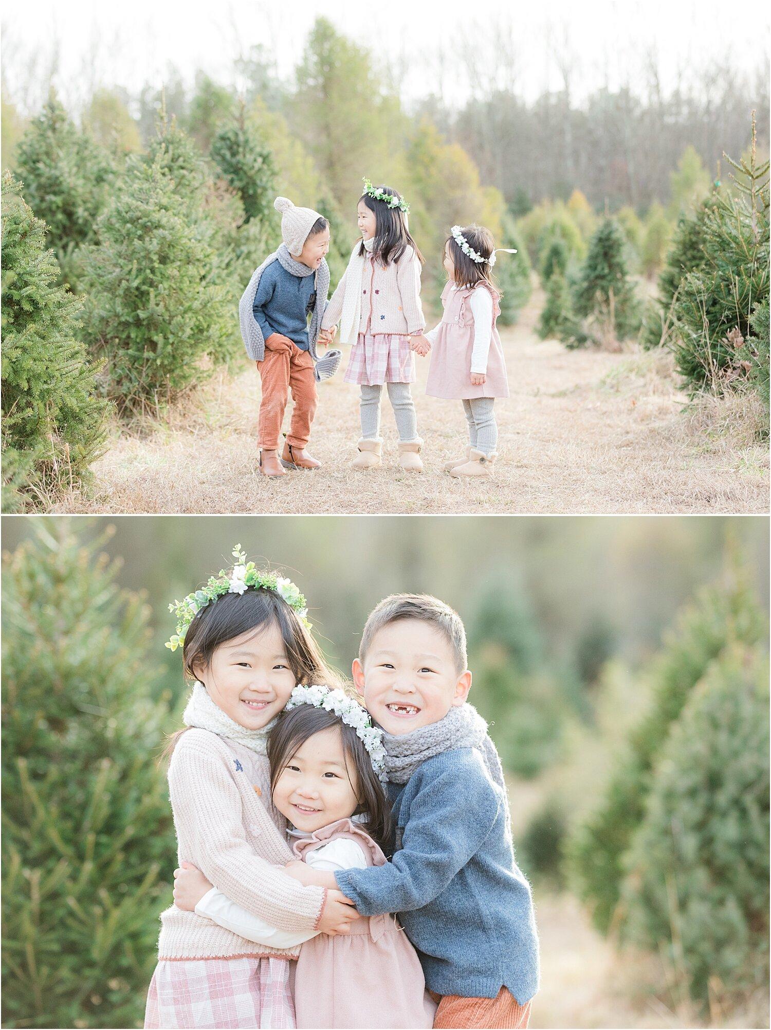 Family Holiday Photos At A Tree Farm In Nj Nj Natural Light Photographers Jac Jules