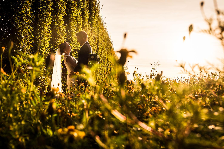 sunset-Roosendaal-trouwfotograaf-bloemenveld.jpg