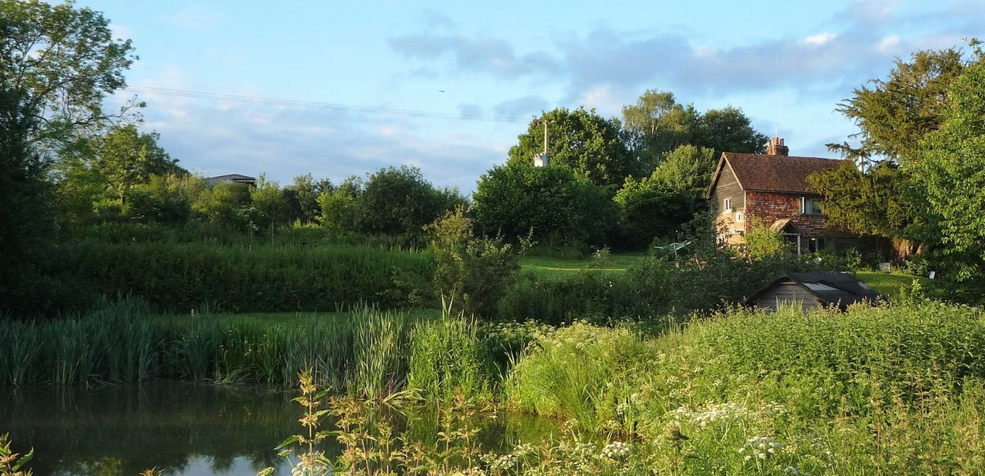 The idyllic site of the soon to be erected straw bale farmhouse