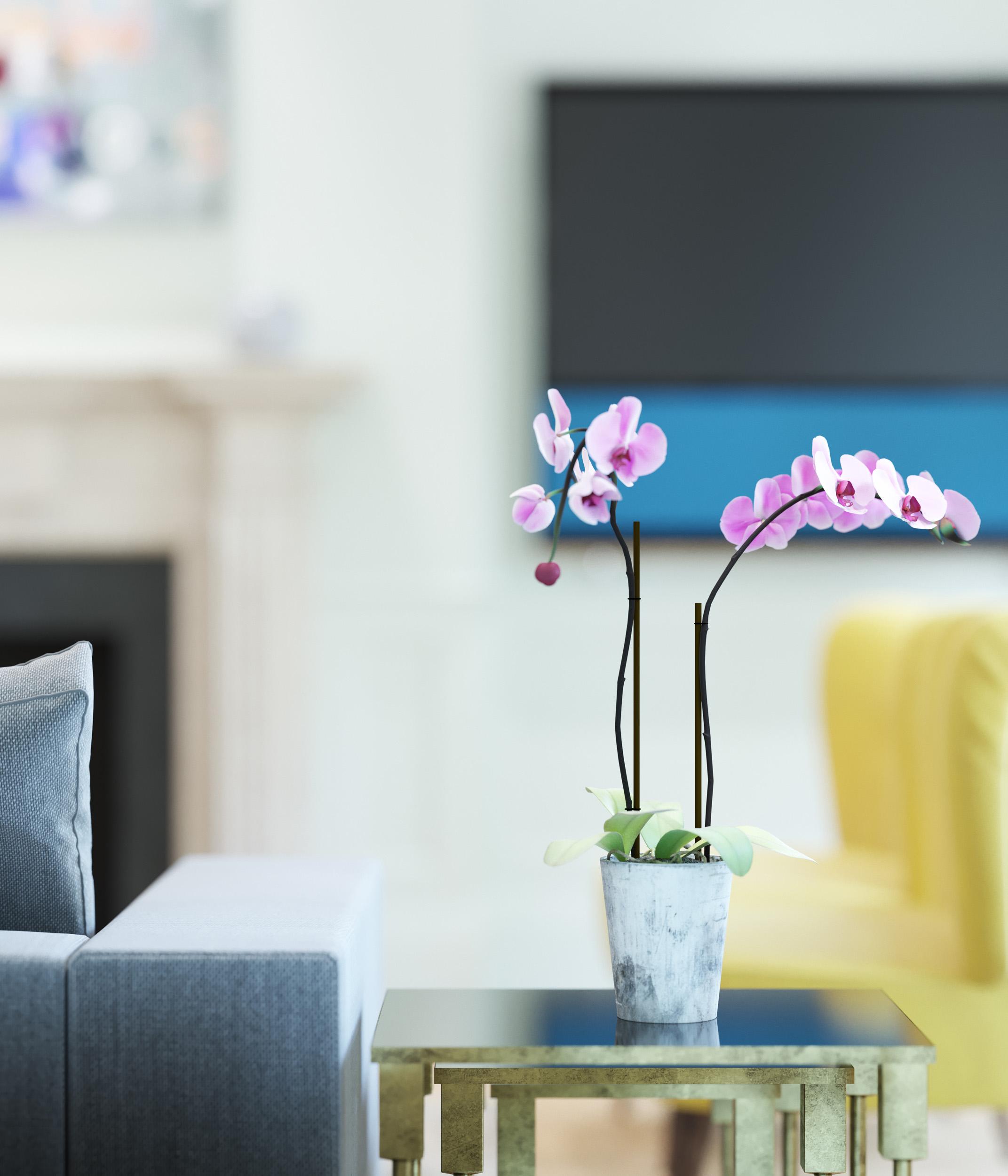 Vig_Lounge_Flower.jpg