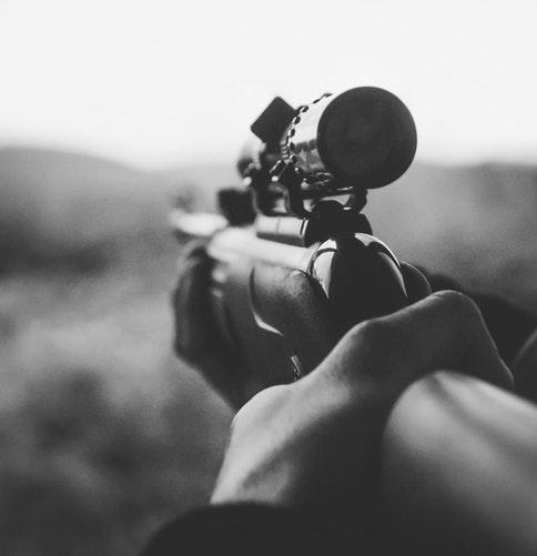 Gun stock image 2.jpg
