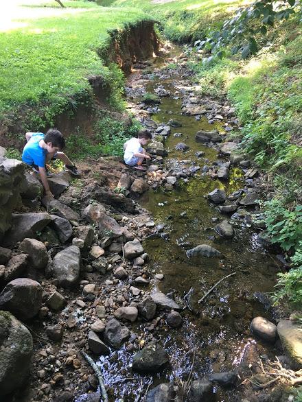 Boys on rocks by creek.JPG