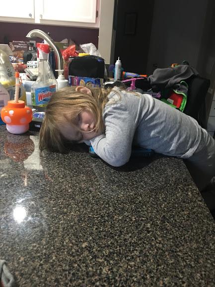 O asleep on counter.JPG