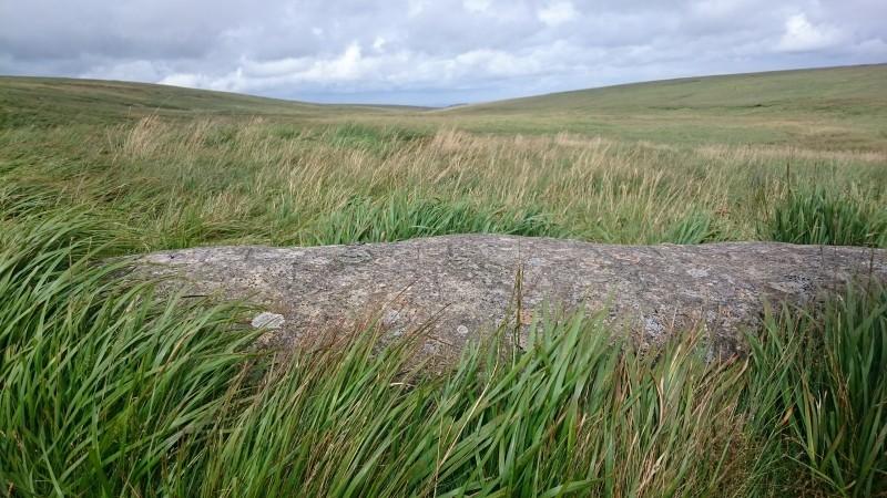 The Ted Hughes memorial stone, Dartmoor.