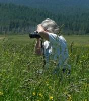 Lisa Morehouse photo