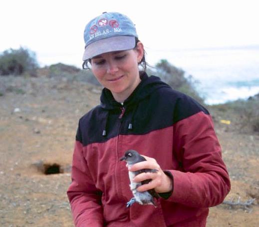 Shaye Wolf, seabird scientist, San Benito Island