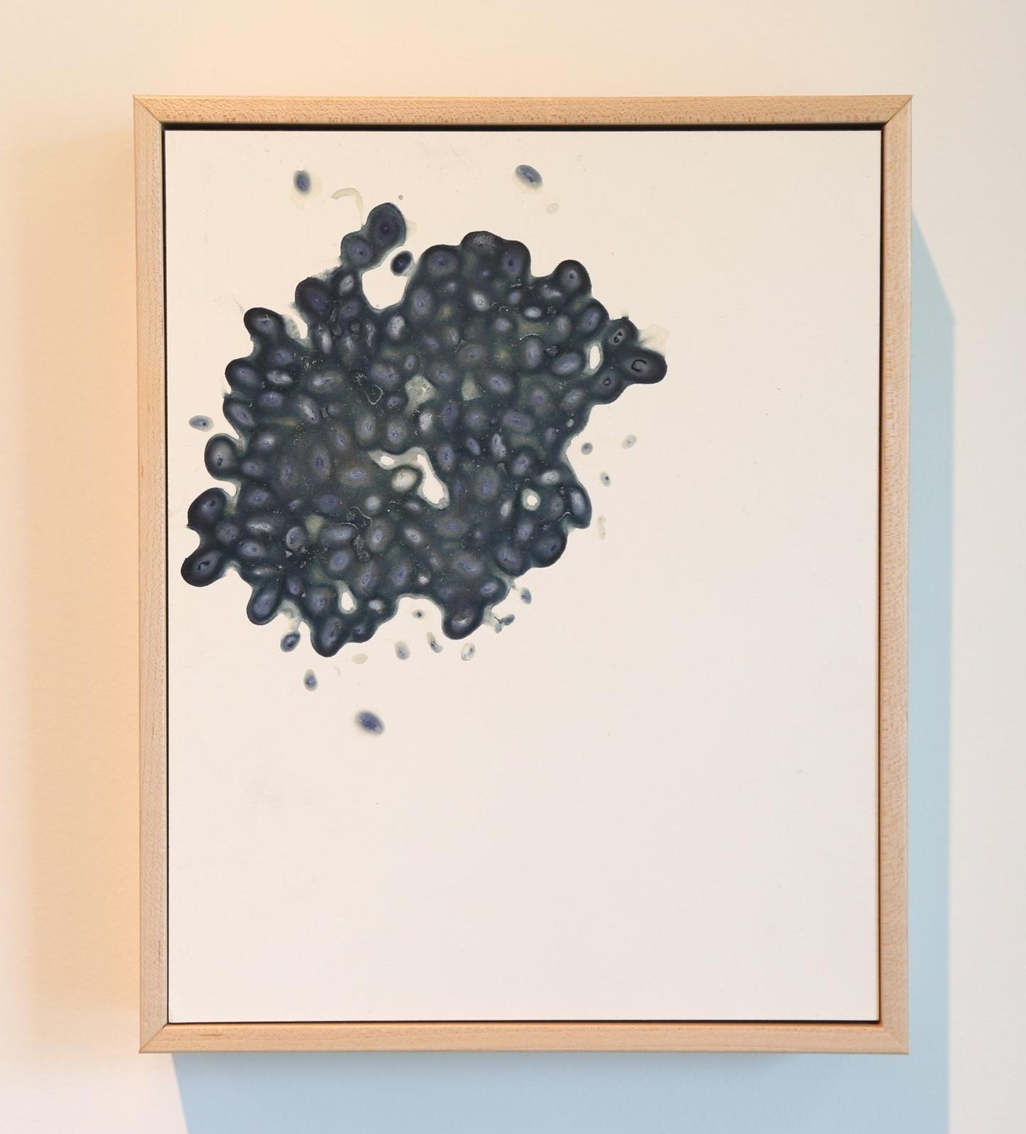 Black Bean After Image