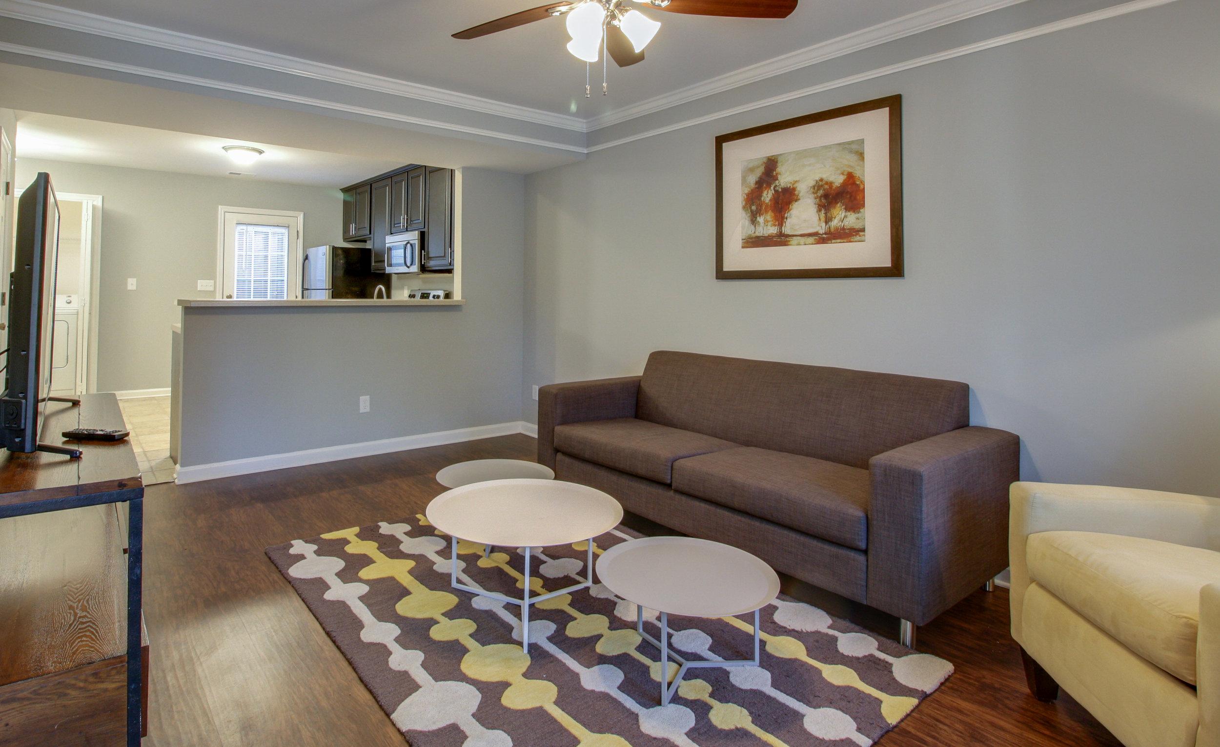Davis Park Smyrna Living Room 1.jpg