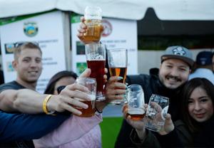beers-to-choose-from.jpg