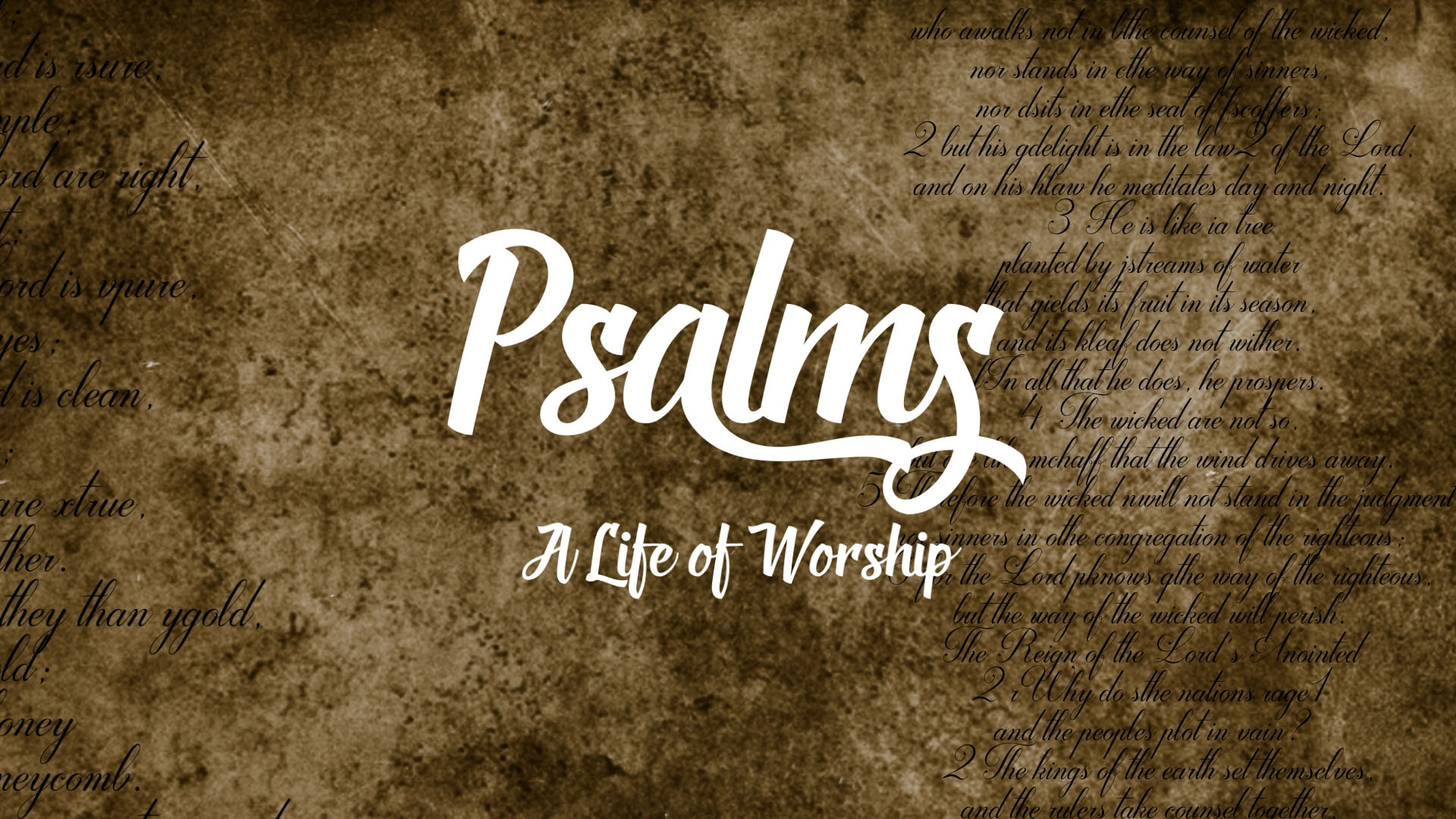 Psalm 19 - Bible Reading and Meditation — Mill City Church