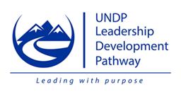 UNDP LDP.png